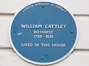 Cattley, William (id=2673)