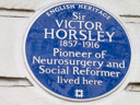 Horsley, Sir Victor (id=542)