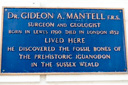 Mantell, Dr Gideon (id=700)