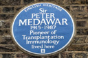 Medawar, Sir Peter (id=731)