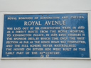 Royal Avenue (id=952)