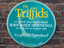 Triffids, The - Born Sandy Devotional (id=2785)