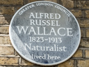 Wallace, Alfred Russel (id=1534)